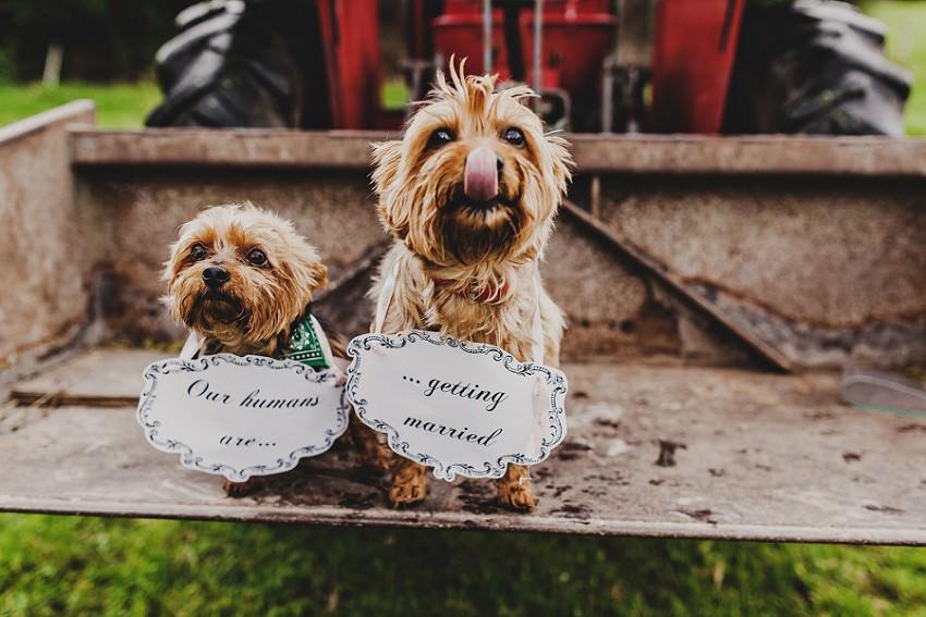 M & C | Engagement Session | Wedding photographer in Sligo 5