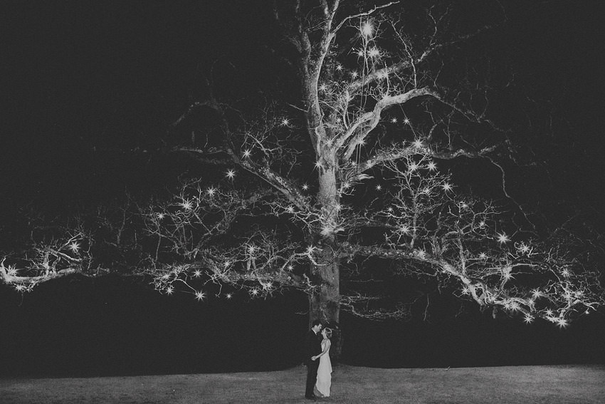 Tree at Rathsallagh House portrait from wedding