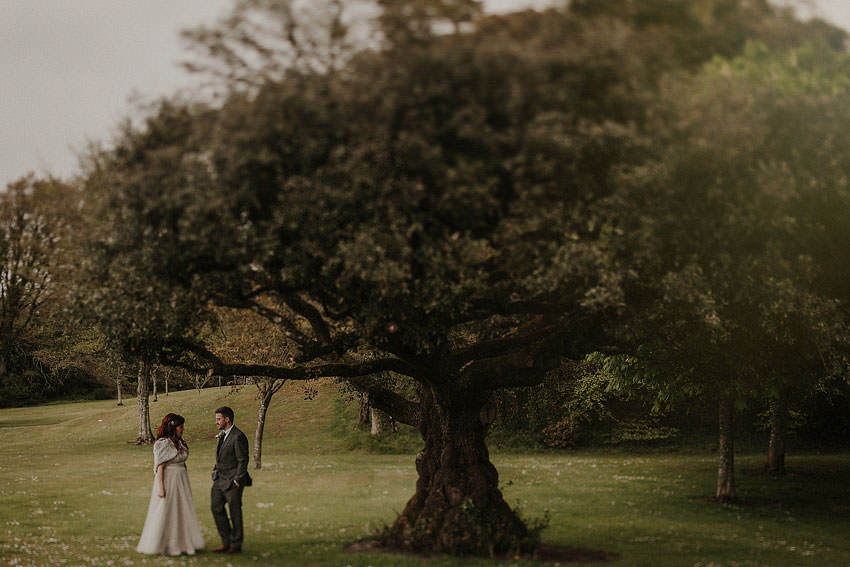 couple under the tree on the grounds of Dromoland castle