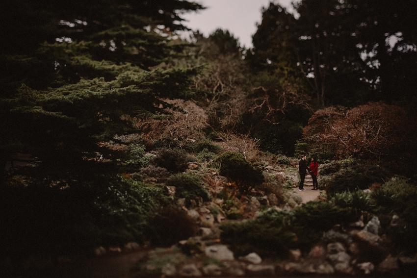 Botanic Gardens Dublin - A & E Photo Session 2