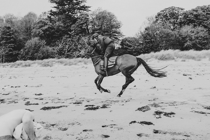beautiful horse passing by on Rathmullan beach