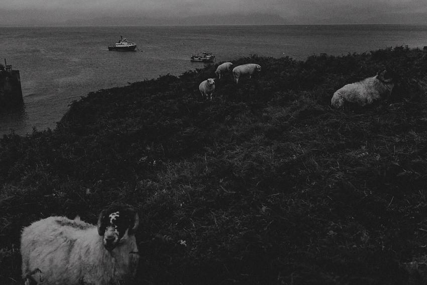 0027-wedding-on-irish-island-inishturk-aran-achill-inishbofin-clare-valentia-documentary-photography_